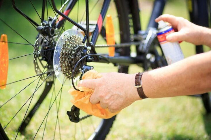 Best Bike Chain Degreaser Clean Your Two Wheeled Friend