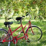 Tandem Bikes History Usage And Where to Find one