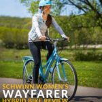 schwinn womens wayfarer